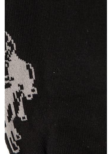 Çorap-U.S.Polo Assn.